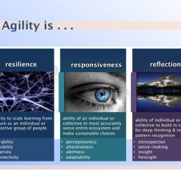 agility3r-landscape
